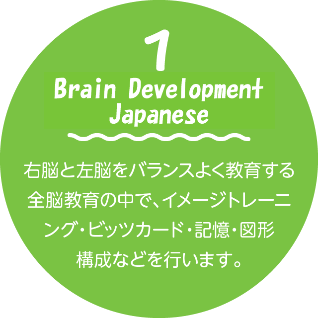 Brain Development japanese